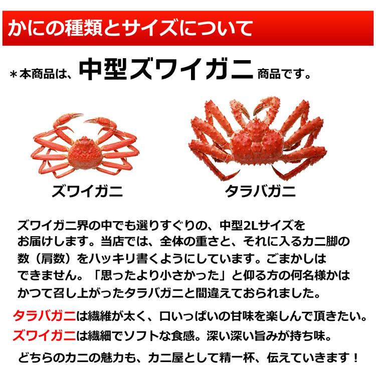 カニの種類とサイズについて